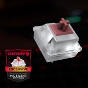 STRAFE RGB MX Silent (10)