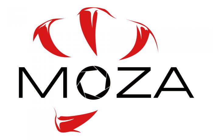 moza logo image